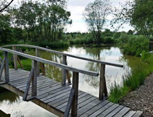 """Naturalny ogród istaw """"Frankówka"""""""